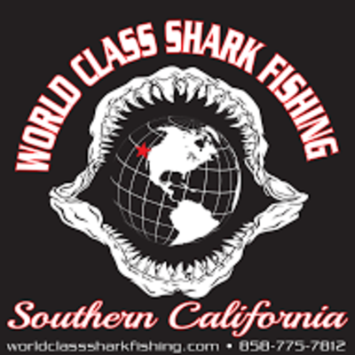 World Class Shark Fishing